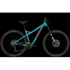 Conway frame MT 829
